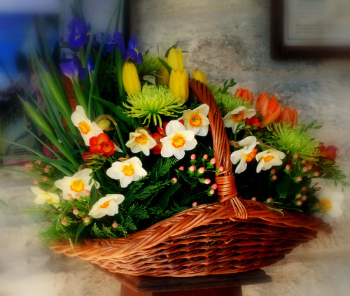 A BASKET FULL OF SPRING