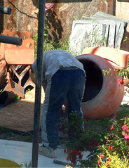 Workmen 0197 - Workmen continue building next door (marmaset) Tags: man male men home sunshine work garden real workers scaffolding workmen lads masculine cement ripped young craft tshirt plaster jeans shade lad worker rough mate build trade mates fit builder workman workie plasterer trademan