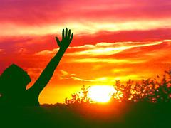 Thankful... (Dave - aka Emptybelly) Tags: sunset red orange silhouette yellow purple magenta hampshire thankful newforest praise bonzag tornadoaward