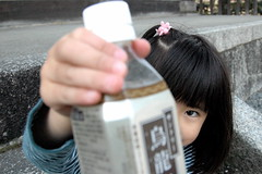 oolong tea? (angie.star) Tags: cute japan temple kyoto dof tea tofukuji kotoha