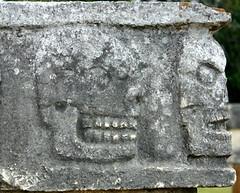 mayaskallar
