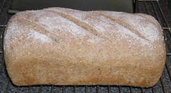 Rye Wheat and Millet Bread (Levine1957) Tags: bread brood beatriceojakangas