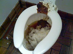 crap (aaronmoller) Tags: toilet crap poop shit diarrhea