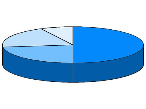 Graphic Design - Rondald McDonald House of Delaware - Pie Chart