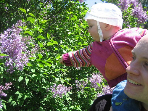 Stopping to smell the lilacs