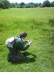 M taking photos in the sunshine