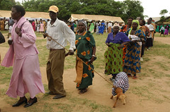 goats make nice gifts, especially when dressed in kitenge (judester1213) Tags: dancing gifts gift kitenge ugandaweddingmarriagelugbaraaruamatrimonyafricamadipeople givinggoats