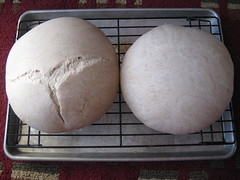 Sour dough loaves