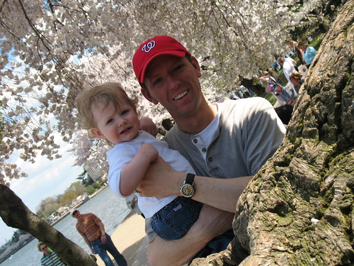 Meg and Daddy Cherry Blossoms 2