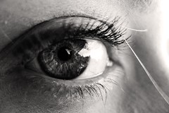 iris bw woman white black macro eye closeup blackwhite eyelashes eyeball pupil