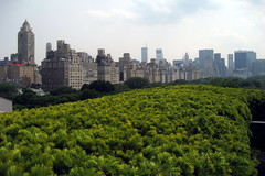 NYC - Metropolitan Museum of Art - Iris and B. Gerald Cantor Roof Garden (wallyg) Tags: nyc newyorkcity roof ny newyork art skyline museum nhl manhattan landmark explore ues gothamist artmuseum metropolitanmuseum themet uppereastside metropolitanmuseumofart roofgarden museummile nationalhistoriclandmark nationalregisterofhistoricplaces usnationalhistoriclandmark nrhp irisandbgeraldcantorroofgarden aia150 usnationalregisterofhistoricplaces newyorkcitylandmarkspreservationcommission nyclpc