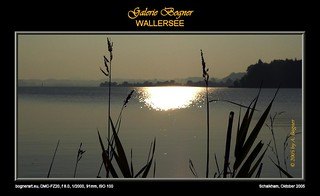 2005-10 WALLERSEE 015