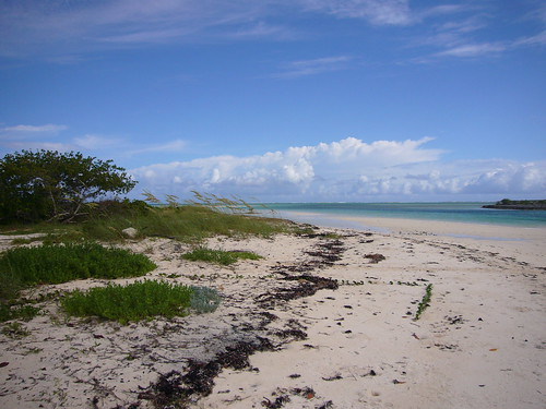 Curtis Creek, Mayaguana Bahamas