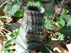 Man Sock in the Ivy
