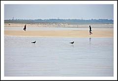 Sous le soleil au znith .. (Philou Philou) Tags: ocean sea mer beach sand sable bretagne shore plage quiberon plouharnel