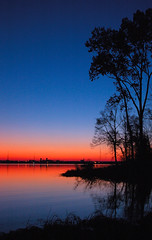 Twilight In Decatur. (BamaWester) Tags: sunset sky lake reflection tree silhouette twilight alabama decatur naturesfinest bamawester napg twilightindecatur 200750plusfaves superbmasterpiece diamondclassphotographer