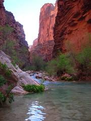 Havasu Canyon