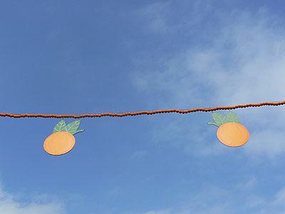 oranges sur ciel bleu !.jpg