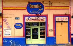 El Danubio Azul (Jesus Guzman-Moya) Tags: méxico mexico colours colores bakery veracruz thewall babel ilmuro panadería chuchogm teocelo abigfave sonydslra100 jesúsguzmánmoya isawyoufirst