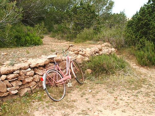 Bicicleta abandonada Cam� Parra