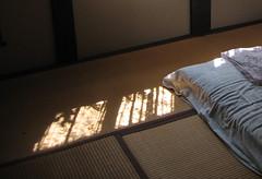 朝日影  ...   morning light (birdfarm) Tags: morning light shadow sunlight japan morninglight bed kyoto floor straw pillow mat tatami 京都 ryokan 日本 sheet futon wrinkle bedclothes 朝 陰 旅館 和室 枕 畳 布団 朝日影