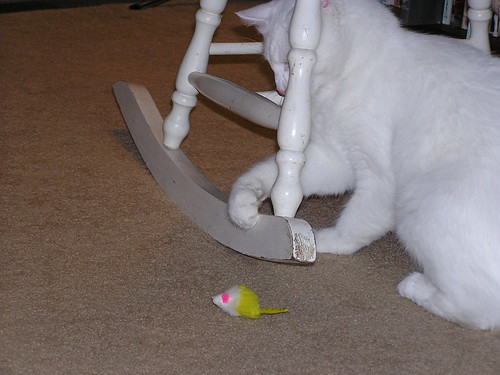 Mouse Stolen 02