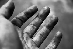 il lavoro di chitarrista [guitarist's job] (Illusiontom) Tags: bw white black macro blackwhite nikon hand guitar fingers bn mano nikkor dita biancoenero chitarra guitarplayer sx 1870 palmo sinistra thebigone chitarrista nikkor1870 d80 nikond80 illusiontom improntedigitale