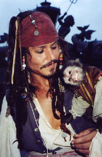 - |POTC|Jack Sparrow| What Shall We Die For?
