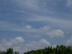 3.31.07 3 597 (trailsinaustin) Tags: sunset sky clouds austin amazing texas secret covert unreal chemicals chemtrails comtrails