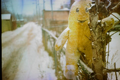 Neighborhood Watch (-Antoine-) Tags: wood winter snow canada film topf25 smile toy stuffed lomo lca alley montral puppet quebec montreal hiver watch freaky creepy neighborhood freak qubec invierno neige expired sourire mitsubishi jouet bois neighborhoodwatch peluche expiredfilm toutou alle hochelaga hochelagamaisonneuve mx100 filmexpir antoinerouleau
