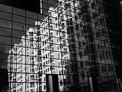 Reflection (Miranda Ruiter) Tags: rotterdam blackandwhite photography reflection architecture building design