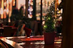 It's Christmastime again (♫♪♭Enricodot ♫♪♭) Tags: enricodot ilobsterit merrychristmas christmastime light bokeh bologna gift happyness lights pine fir