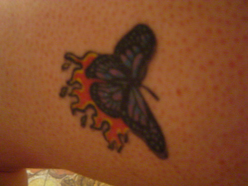Butterfly tattoo picture in the skin