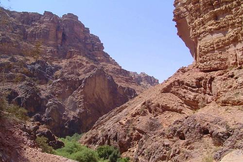 Green Wadi, Petra