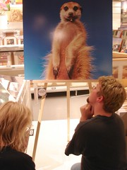 Worship Sloth