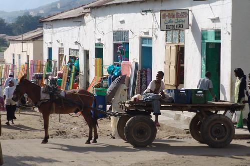 Mule and cart in Keren