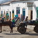 Mule and cart in Keren