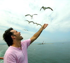 Seagulls and David (yewco) Tags: japan niigata sado seagull sky david feeding ocean fun smile food pink man wind wonder