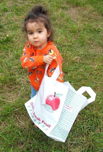 KD-apples2