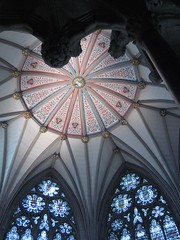 Chapter House ceiling (Xerones) Tags: york minster medieval autumnsunshine photodomino photodomino138 wow