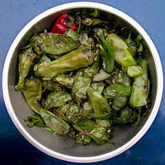 chile (Mary Hockenbery (reddirtrose)) Tags: chile blue red green pepper bowl squaredcircle peppers dilosept05 dilosep05