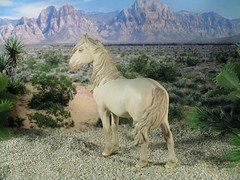 a beautiful sculpture of a Mustang mare, sculpted by Sarah Rose - finished by Kimberly Harvey, photo&copy appaloosa