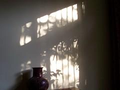 (Nahidyoussefi) Tags: 2005 home iran persia iranian tehran تهران ایرانیان nahidyoussefi ناهیدیوسفی