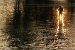 釣りびとの日暮れ the sun sets on the angler