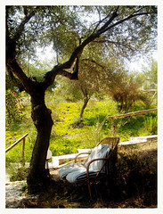 Just Relaxing (florian.b) Tags: greece griechenland travel europe reise 2005 nature chair relaxe ilovenature blue white bluewhite wood tree baum blau wei schwarz shade schatten green grn grass sun sonne journey europa greek natur mothernature naturalight light plants urlaub frame rahmen frames framed travelling trip lyingsaucer whennaturecalls outside outdoor mutternatur naturecalls