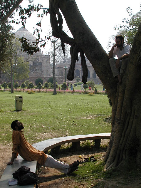 Ravi Tree and I New Delhi by electricfrog