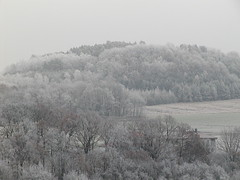 Winter in Creidlitz - PC120007 (Andreas Helke) Tags: winter white 2004 germany deutschland coburg europa europe frost fav franken weiss raureif creidlitz reif fav2 candreashelke 2005121513g1 worldsfavorite 20060820291 landkreiscoburg donothide 20070130502 oldstileoriginalsecret fav2andmore popularold
