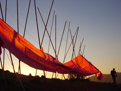 m o n t a g e (alvazer) Tags: sunset red paper evening flag cineawardjan2006 alvazer vazer abigfave