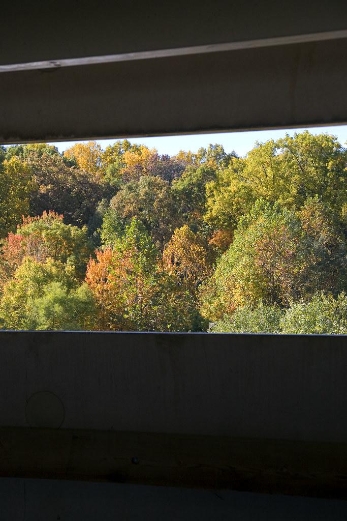 garage vista