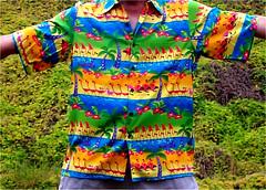 Fantasia 2000 Cast Shirt (oybay) Tags: hawaiian shirt disney fantasia colors aloha hawaii hawaiianshirt color fantasia2000